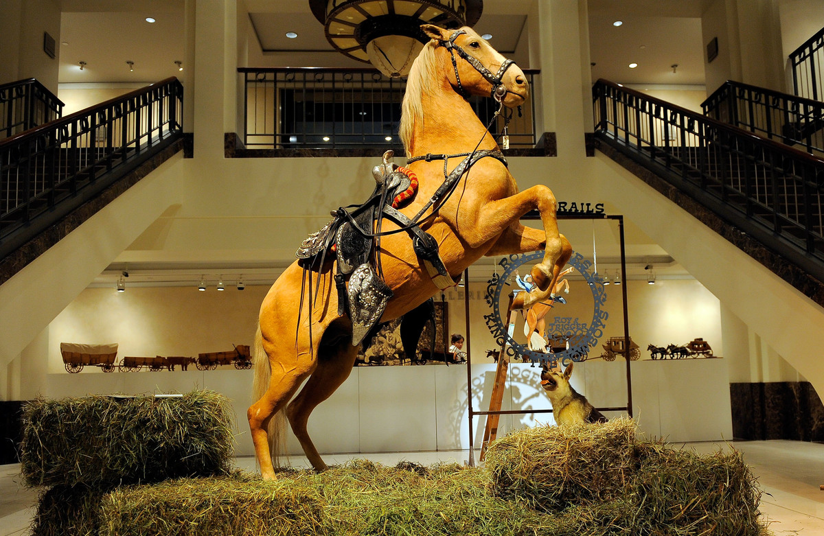 trigger horse on display at the roy rogers museum