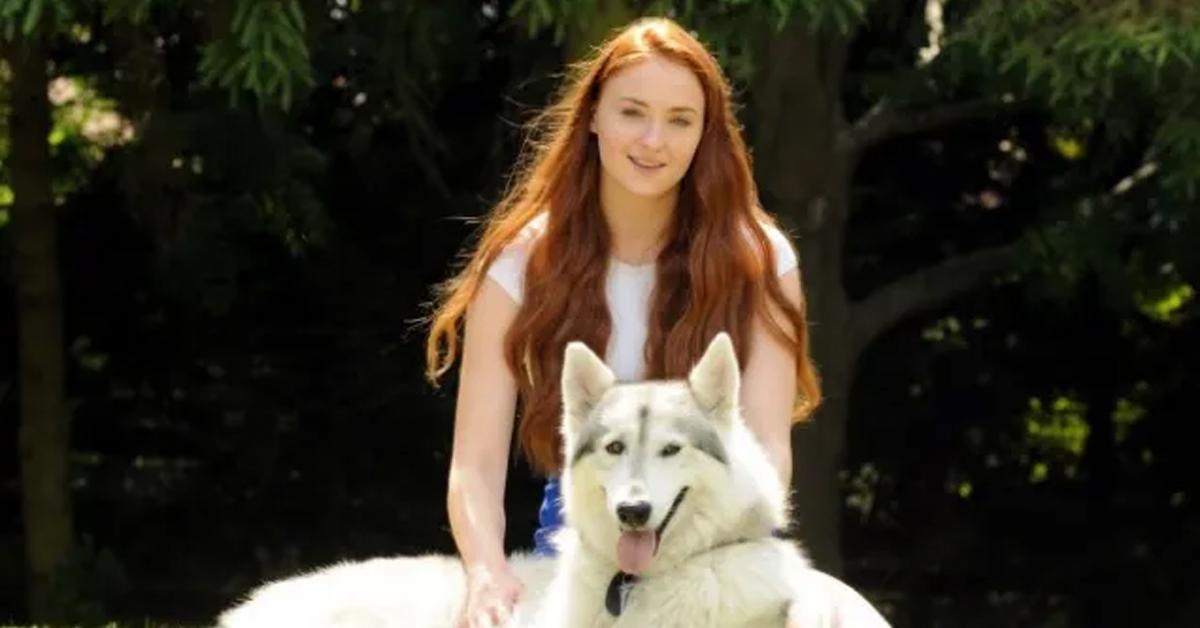 sophie turner and her direwolf
